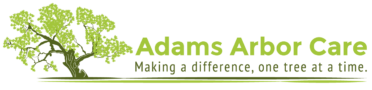 Adams Arbor Care | Tree Service Professionals
